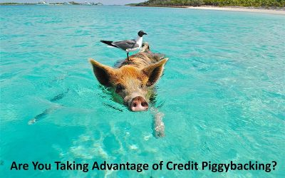 What Are Tradelines and What is Credit Piggybacking?